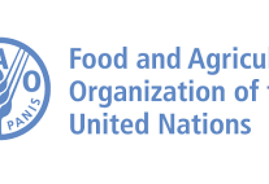 People need affordable food – Food and Agriculture Organisation (FAO)